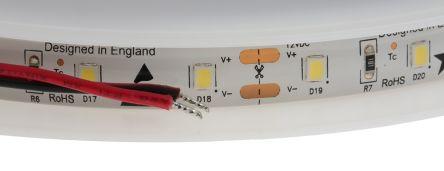 PowerLED F10-C3528-12-60-IP65, 5m White LED Strip, (6000K)