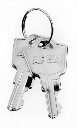 SPARE KEY NICKLE product photo