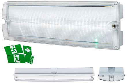 Knightsbridge, 4 W Rectangular White LED Bulkhead Light, Clear, 230 V, Polycarbonate, IP65, with White Diffuser
