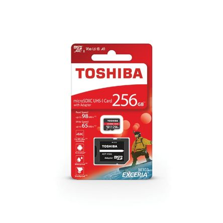 Toshiba 256 GB MicroSD Card Class 10, UHS-1 U3