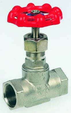Stainless Steel Globe Valve, 1/2 in BSP 32 bar product photo