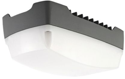 Plafoniera Per Esterno A Led : Trledsecbcs007 plafoniera da esterno philips lighting led 10 w