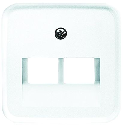 Busch Jaeger - ABB White 2 Gang Cover Plate Thermoplastic RJ45 Cover Plate