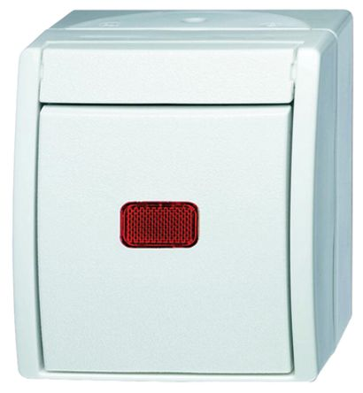 10 A Surface Mount Rocker Light Switch, 2 Way, 1 Gang, 250 V