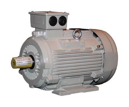 TECO Westinghouse ALDA Reversible Induction AC Motor, 11 kW, IE3, 3 Phase, 4 Pole, 400 V, 460 V, 690 V, Foot Mounting