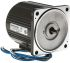 Panasonic M81 Reversible Induction AC Motor, 25 W, 1 Phase, 4 Pole, 230 V ac
