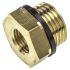 Legris Brass 1/2 in BSPP Male x 1/4 in BSPP Female Straight Reducer Threaded Fitting