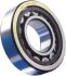 SKF NU305ECP 25mm Cylindrical Roller Bearing, 62mm O.D