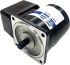 DKM Reversible Induction AC Motor, 25 W, 1 Phase, 4 Pole, 220 V, 240 V