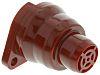 Red Panel Mount Buzzer, 40 mm Diameter, 24