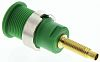 Staubli Green Female Banana Plug - Solder Termination,