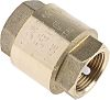 RS PRO Brass Single Non Return Valve 3/4