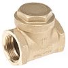 RS PRO Brass Single Non Return Valve 1