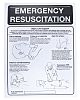 RS PRO First Aid Safety Wall Chart, Plastic,