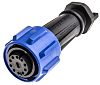 Bulgin Screw Connector, 10 Contacts, Cable Mount, IP68,