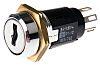 Key Switch, DPDT-NO/NC, 5 A@ 115 V ac