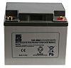 RS PRO Lead Acid Battery - 12V, 42Ah