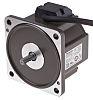 Panasonic GV Anti Clockwise, Clockwise Brushless AC Motor,