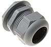 Lapp Skintop PG 42 Cable Gland With Locknut,