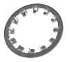 Plain Stainless Steel Internal Tooth Shakeproof Washer, M20,
