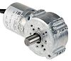 Brushless EC Motor with angle gearhead,