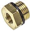 Legris Brass 1/2 in BSPP Male x 1/4