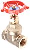 RS PRO Gate Valve, 1/2in