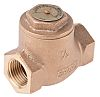 RS PRO Bronze Single Non Return Valve 1/2 in BSPT