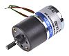 Micromotors Brushed Geared DC Geared Motor, 12 V,