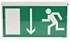 PET Fire Exit Down Non-Illuminated Emergency Exit Sign