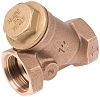Cimberio, 1 in BSPT Brass Y Strainer