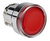 Schneider Electric Flush Illuminated, Illuminated Red Push Button