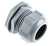Lapp Skintop M40 Cable Gland With Locknut, Polyamide,