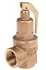 Nabic Valve Safety Products 5bar Pressure Relief Valve