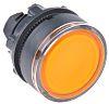 Schneider Electric Illuminated Flush Orange Push Button Head