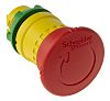 Schneider Electric Push Button Head - 22mm