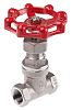 RS PRO Stainless Steel Globe Valve, 3/8 in