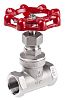 RS PRO Stainless Steel Globe Valve, 3/4 in