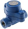 Spirax Sarco 32 bar Steel Thermostatic Steam Trap,