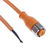 Lumberg Automation Straight M12 to Unterminated Cable assembly,