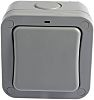 Grey 20 A Surface Mount Rocker Light Switch