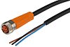 ifm electronic Cable assembly