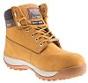RS PRO Honey Steel Toe Capped Mens Safety Boots, UK 8, EU 42