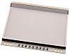 Electronic Assembly White Backlight, LED 40-Pin 46 x