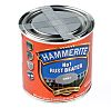 Hammerite Anti-Corrosion, Rust Protection Smooth Grey Paint,