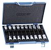 Gedore Driver Bit Set 18 Pieces, Torx