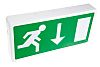 LED Emergency Lighting 3 W