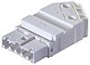 Wieland, Gesis Male 4 Pole Connector, Cable Mount,