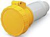 IEC309 strt socket 16A 110V 2P+E IP67