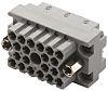 EDAC, 516 20 Way D-sub Connector Socket